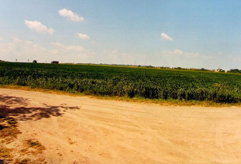 Bewertung von Landwirtschaftsflächen (Ackerland)